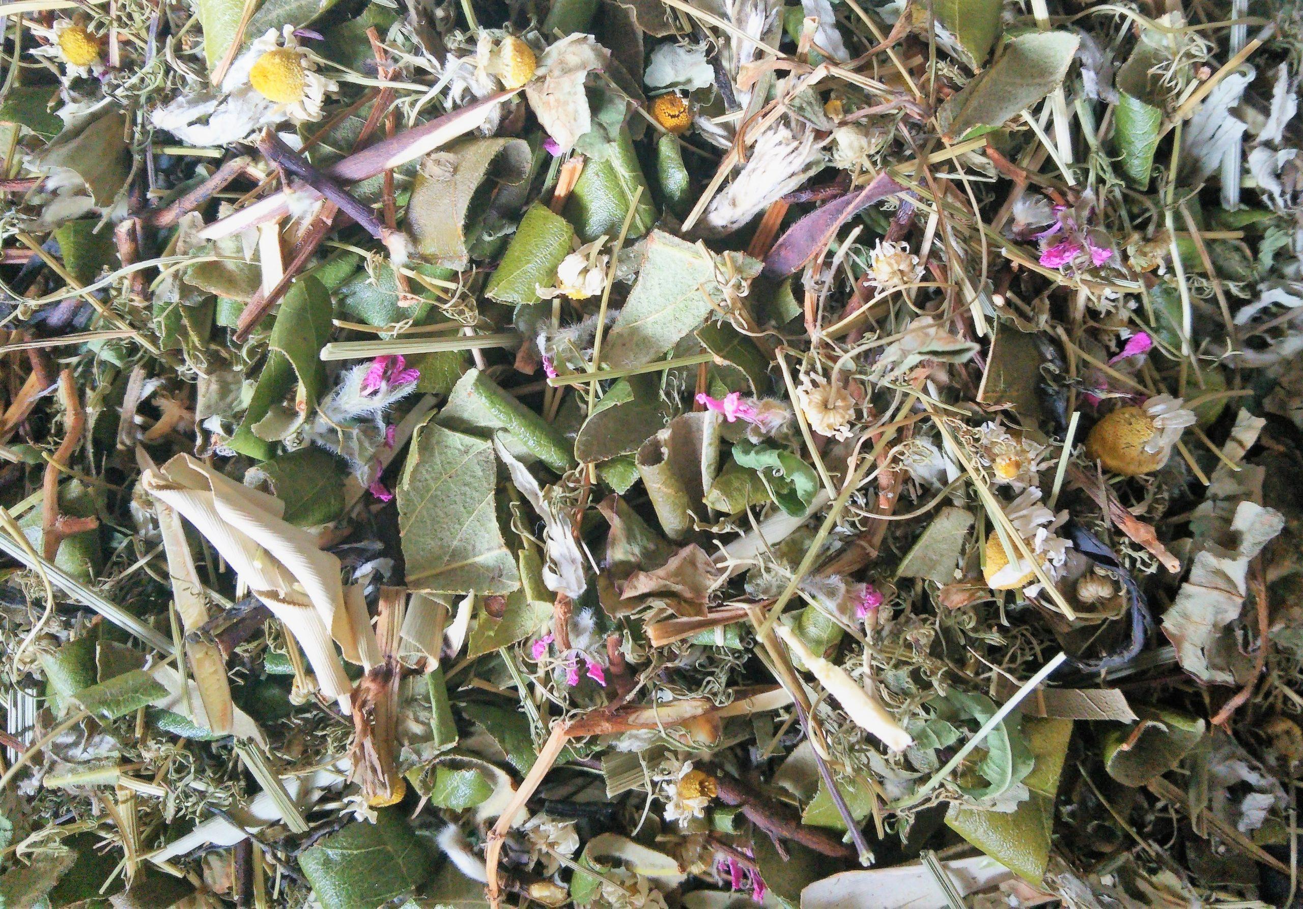 6月の野草茶
